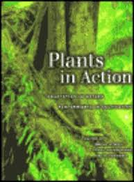 Plants in Action: Adaption in Nature, Performance in Cultivation