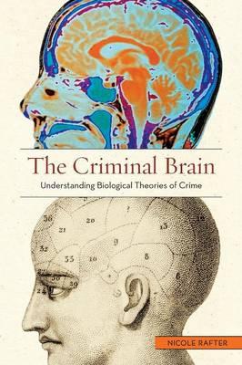 The Criminal Brain: Understanding Biological Theories of Crime