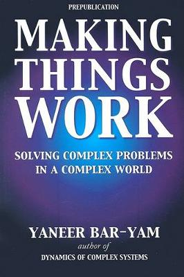 Making Things Work: Solving Complex Problems in a Complex World
