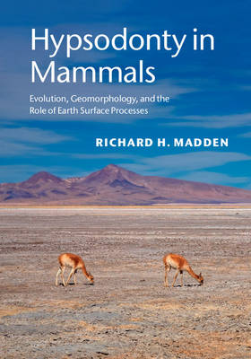 Hypsodonty in Mammals: Evolution, Geomorphology, and the Role of Earth Surface Processes