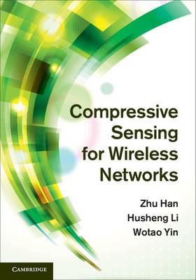 Compressive Sensing Wireless Ntwrks
