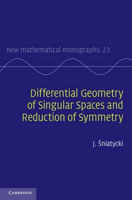 Dffrntl Geometry Sing Sp Red Symtry