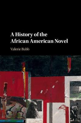 A History of the African American Novel