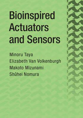 Bioinspired Actuators and Sensors
