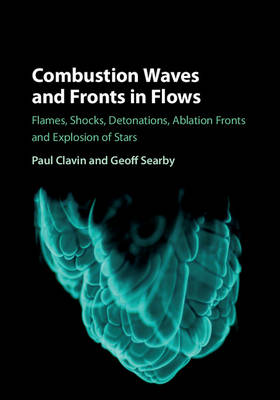 Combustion Waves and Fronts in Flows: Flames, Shocks, Detonations, Ablation Fronts and Explosion of Stars