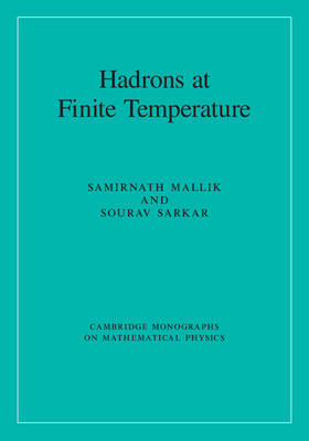 Hadrons at Finite Temperature