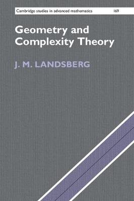 Geometry and Complexity Theory