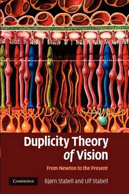Duplicity Theory of Vision