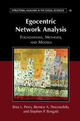 Egocentric Network Analysis: Foundations, Methods, and Models