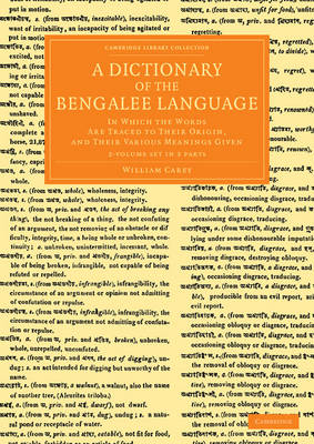 Dictionary Bengalee Language 2vs