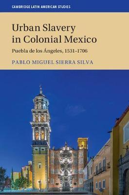 Urban Slavery in Colonial Mexico: Puebla de los Angeles, 1531-1706