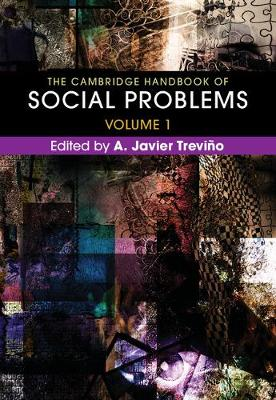 The Cambridge Handbook of Social Problems  : Volume 1