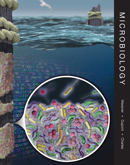 Microbiology: Applications and Connections, 1st Edition