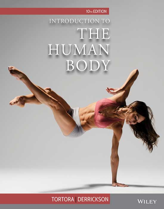 Intro to Human Body, 10th Edition