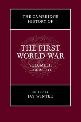 The Cambridge History of the First World War: Volume 3, Civil Society