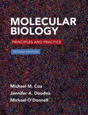 Molecular Biology 2e