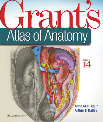 Color Atlas Of Anatomy - 10 Textbooks | Jekkle