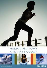 Human Anatomy & Physiology ( Binder-Ready Version loose pages ) & Mastering A&P Access code with eText