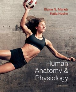 Mastering A&p Access Code (digital) For Human Anatomy &   Physiology 9ed