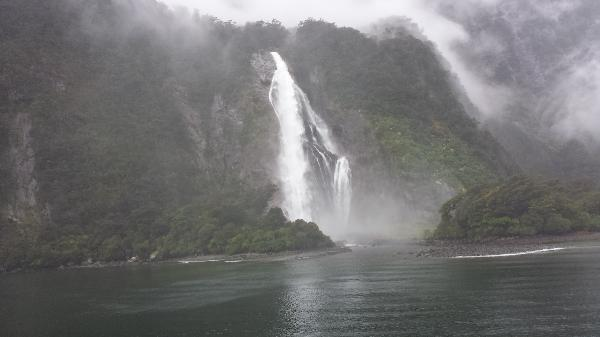 Trip to milford sounds