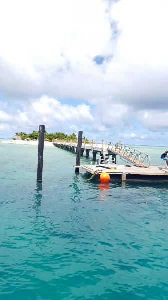 Captain cook - tivua island cruise