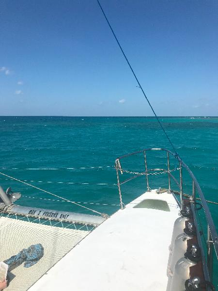 Great day out in the ocean