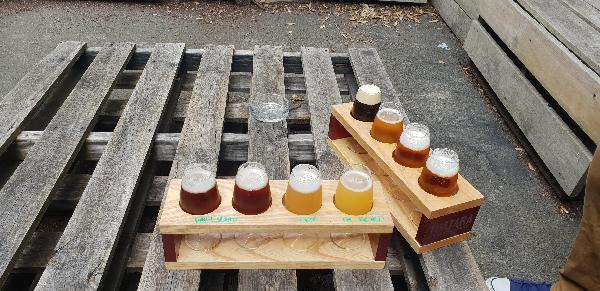 Beer tasting, yum!