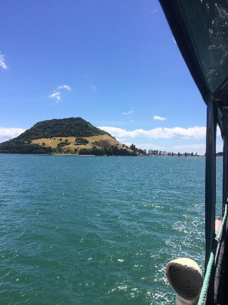 Kewpie Cruises, Tauranga
