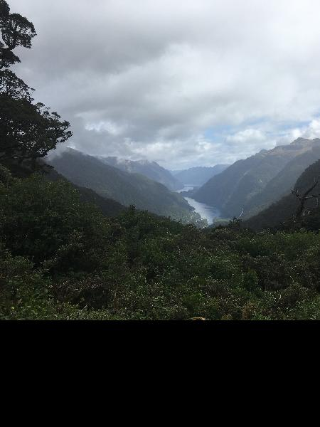 Fantastic day cruise in Doubtful Sound