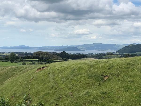 Rotorua River view
