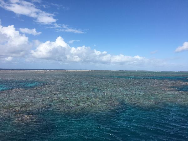 Amazing day on the reef