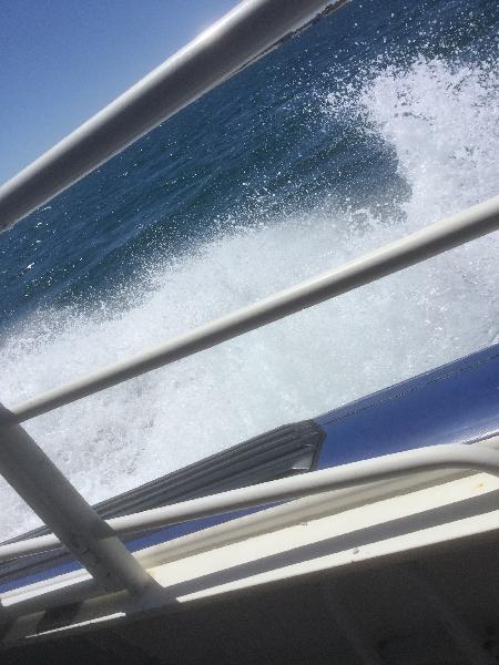 Awesome cruise ! 😎