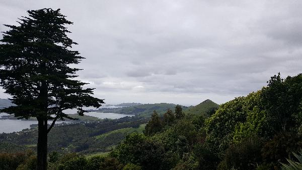 Great views, not hard to see why theyWilliam Larnach chose to build here