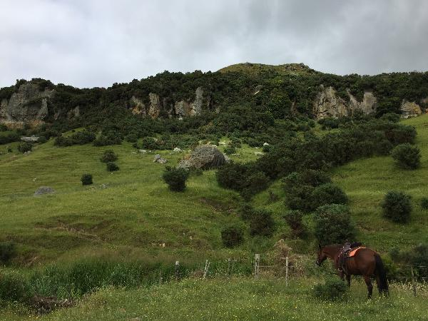 Stone Hill, horse trek