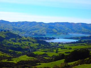 Photo stop along the road to Akaroa
