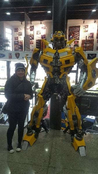 Bumblebee is the Man