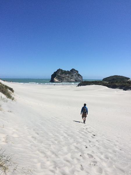 Sand dunes at Wharariki Beach