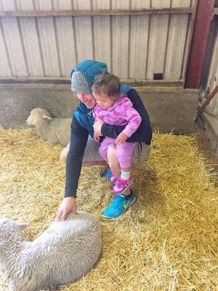 Hahndorf Farm Barn - A Day On The Farm - Epic deals and last