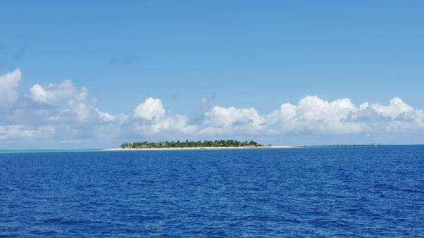 Captain cook - tivua island cruise