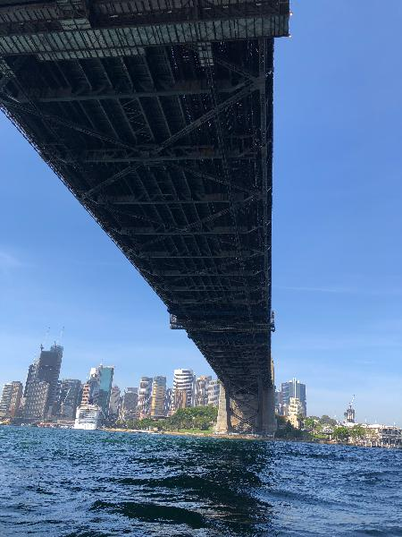 What a way to see Sydney Harbour