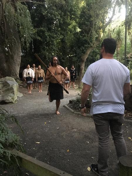 Maori experience, kiwi tour and hangi