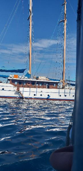 Whale tale cruise