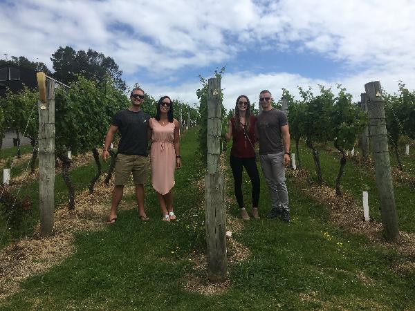 Te Motu winery