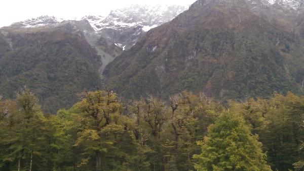 Amazing Milford Sounds