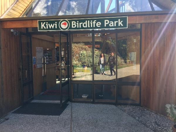 Recommended to see kiwis!