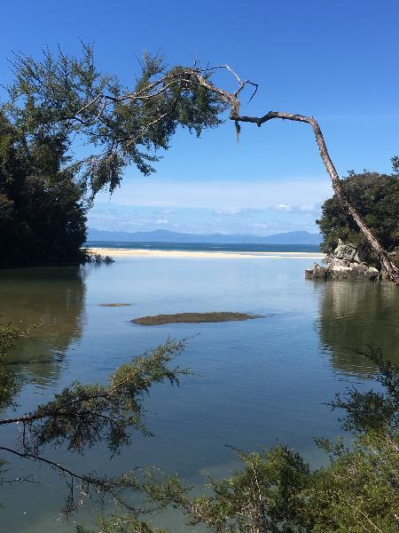 Gorgeous day in the Abel Tasman