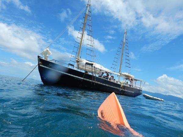 Best Reef day onboard the Falla!