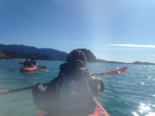 You should do Kayaking in Abel Tasman! :)