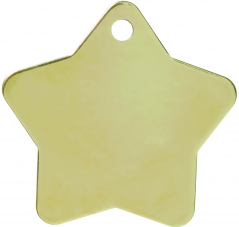 Brass Star Pet Tag