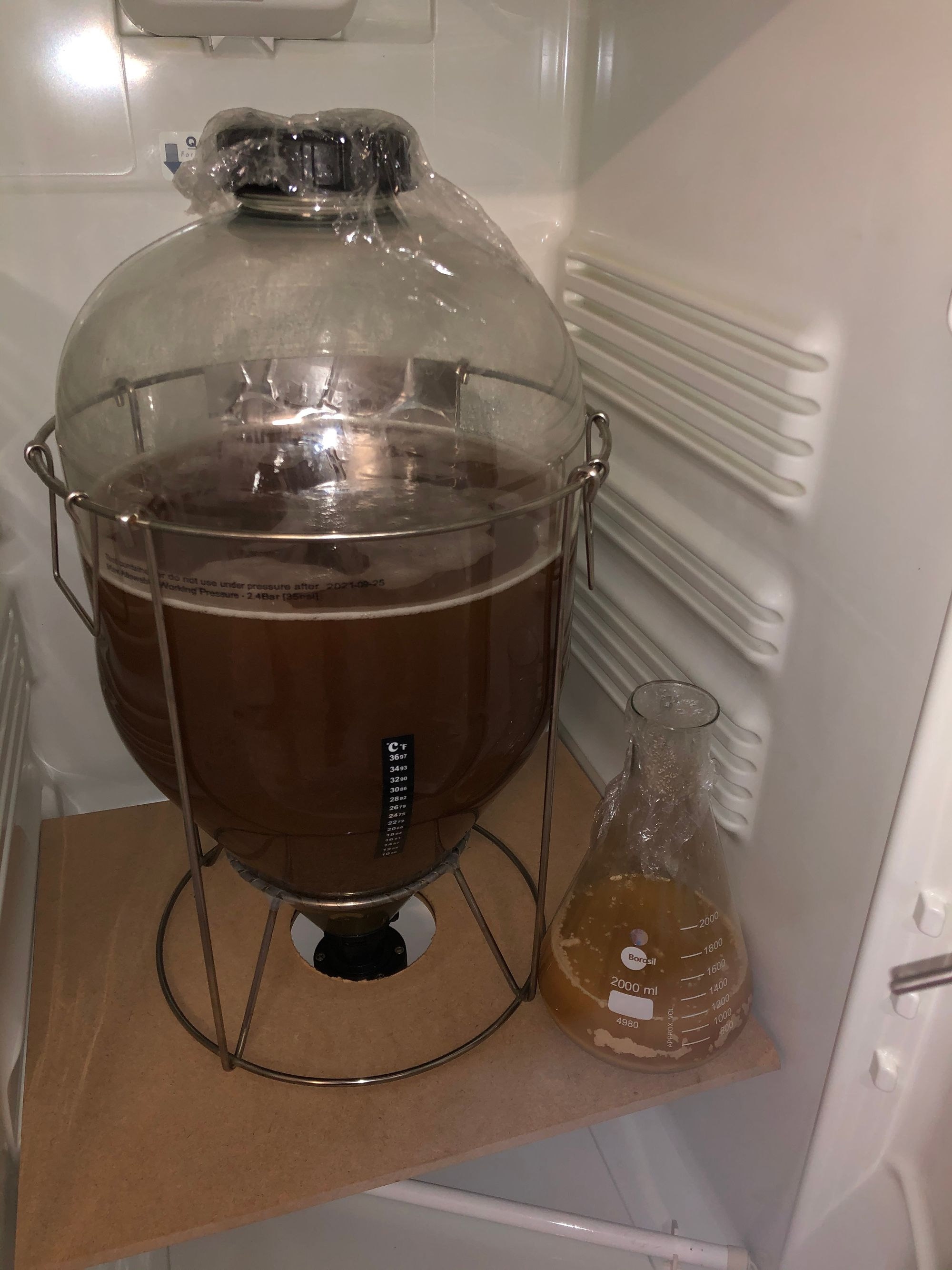 Brew # 7 - German Lager